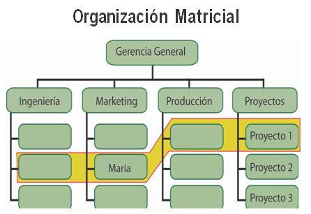 Lider De Proyecto Com Qué Estructura Organizacional Se