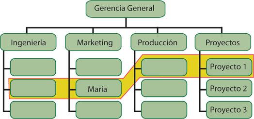 Liderdeproyecto Com Qué Estructura Organizacional Se