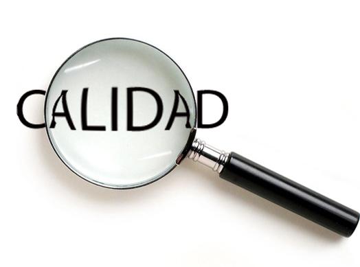 www.liderdeproyecto.com